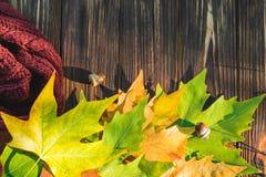 De herfstbladeren op een donkere oude houten achtergrond Royalty-vrije Stock Fotografie