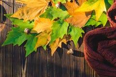 De herfstbladeren op een donkere oude houten achtergrond Stock Fotografie