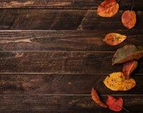 De herfstbladeren op een donkere oude houten achtergrond Helder de herfstverlof Stock Fotografie