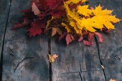 De herfstbladeren op een oude donkere houten achtergrond Stock Afbeelding