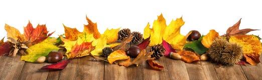 De herfstbladeren op houten lijst, geïsoleerde studio Royalty-vrije Stock Afbeeldingen