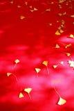 De herfstbladeren op rode stof Royalty-vrije Stock Fotografie