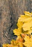 De herfstbladeren over houten achtergrond met exemplaarruimte stock afbeelding