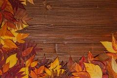 De herfstbladeren over oude uitstekende houten achtergrond Stock Fotografie