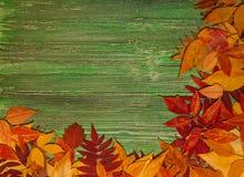 De herfstbladeren over oude uitstekende houten achtergrond Royalty-vrije Stock Foto
