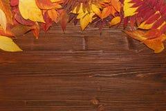 De herfstbladeren over oude uitstekende houten achtergrond Stock Foto