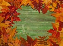 De herfstbladeren over oude uitstekende houten achtergrond Royalty-vrije Stock Afbeelding