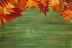 De herfstbladeren over oude uitstekende houten achtergrond Stock Foto's