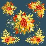 De herfstbladeren, reeks decoratieve elementen Stock Afbeeldingen