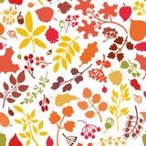 De herfstbladeren, takken, bessen naadloos patroon Stock Foto's