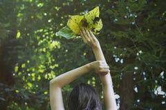 De herfstbladeren van de meisjesholding in zijn handen Stock Foto's
