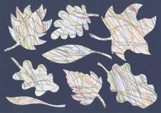 De herfstbladeren van multi-colored gekruiste lijnen, groep voorwerpen Royalty-vrije Illustratie