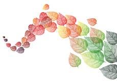 De herfstbladeren, vector Stock Foto's