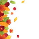De herfstbladeren, vectorachtergrond in heldere kleuren Stock Foto's