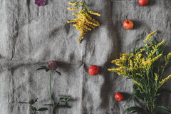 De herfstbloemen en appelen op de grijze doek hoogste mening Royalty-vrije Stock Afbeelding