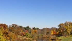 De herfstbomen en hemel Royalty-vrije Stock Foto