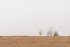 De herfstbomen in mist Royalty-vrije Stock Afbeelding