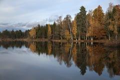 De de herfstbomen zijn spiegels in de blauwe hemel van water difefferent kleuren stock foto's