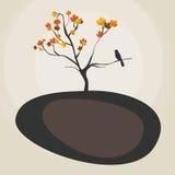 De herfstboom Royalty-vrije Stock Fotografie