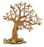De herfstboom met stenen royalty-vrije illustratie