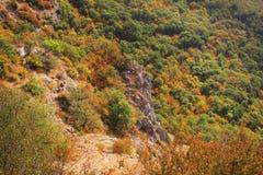 De herfstbos in de bergen gekleurde hoogste mening Royalty-vrije Stock Foto's
