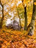 De herfstbos en de ruïnes op de heuvel Stock Foto's