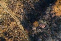 De herfstbos met een weg Schieten het op grote hoogte van een hommel stock afbeelding