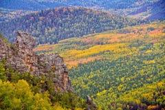 De herfstbos met klip Stock Afbeeldingen