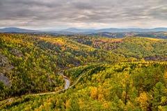 De herfstbos met rivier Stock Foto's
