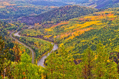 De herfstbos met rivier Royalty-vrije Stock Fotografie