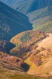 De herfstbos op een bergheuvel Stock Foto