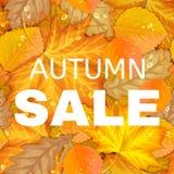 De herfstbrief met bladeren Royalty-vrije Stock Foto's