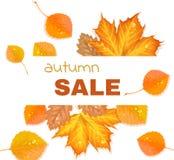 De herfstbrief met bladeren Stock Fotografie