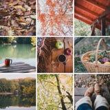 De herfstcollage Royalty-vrije Stock Afbeeldingen