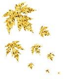 De herfstdaling met gouden esdoornbladeren Royalty-vrije Stock Fotografie