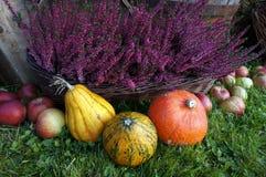 De herfstdecoratie, pompoenen, pompoen, heidebloemen en appelen stock afbeeldingen