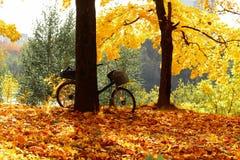 De herfstfiets Stock Fotografie