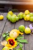 De herfstfoto Mooie heldere bladeren en vruchten op de tuinlijst stock foto's