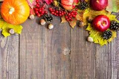 De herfstfruit en groentenachtergrond met exemplaarruimte Stock Afbeelding