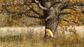 De herfstgang op achtergrond van eenzame oude eiken boom stock videobeelden