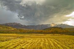 De herfstgebied van oogst Donkere wolken Stock Afbeeldingen