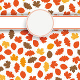 De herfstgebladerte Royalty-vrije Stock Afbeelding
