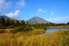 De herfstgebladerte in Aomori, Japan stock afbeelding
