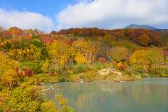 De herfstgebladerte in Aomori, Japan stock foto