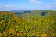 De herfstgebladerte in Aomori, Japan stock afbeeldingen