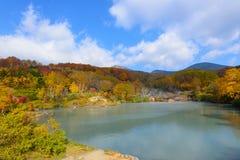 De herfstgebladerte in Aomori, Japan royalty-vrije stock foto