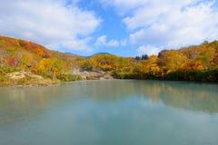 De herfstgebladerte in Aomori, Japan stock foto's