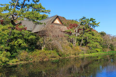 De herfstgebladerte in de Sankeien-Tuin, Yokohama, Kanagawa, Japan Stock Afbeelding