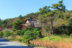 De herfstgebladerte in de Sankeien-Tuin, Yokohama, Kanagawa, Japan Stock Fotografie