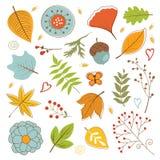 De herfstgebladerte met takjes, bloemen en bladeren wordt geplaatst dat Stock Foto's